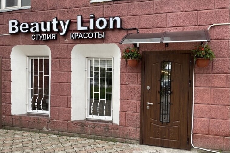 Beauty Lion